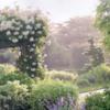 roselandscape