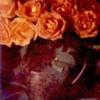 rosescopperpot