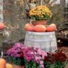 pumpkinsflowers