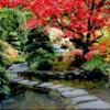 autumngarden3